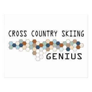 Cross Country Skiing Genius Postcard