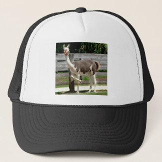 Cross-Legged Llama Hat