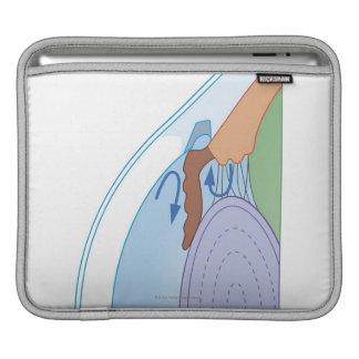 Cross section biomedical illustration of fluid iPad sleeve