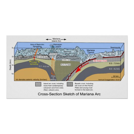 Cross Section Diagram of the Mariana Trench Poster