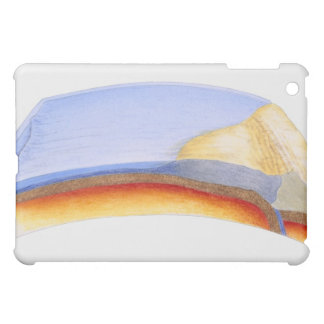 Cross section illustration of formation of iPad mini case