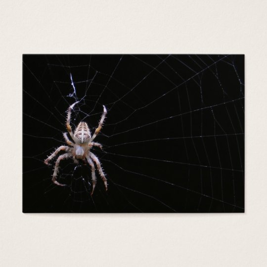 Cross Spider ~ ATC Business Card