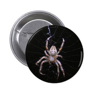 Cross Spider ~ button