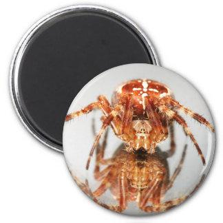 Cross spider on a mirror 6 cm round magnet