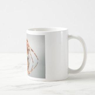 Cross spider on a mirror basic white mug