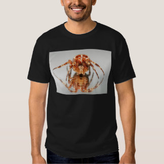 Cross spider on a mirror t-shirts