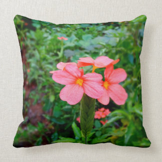 Crossandras-Have a delightful & fresh Good morning Cushion