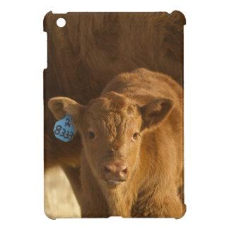 Crossbred cow with calf near Choteau, Montana, iPad Mini Cases