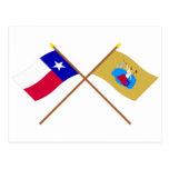 Crossed Texas and San Jacinto Flags