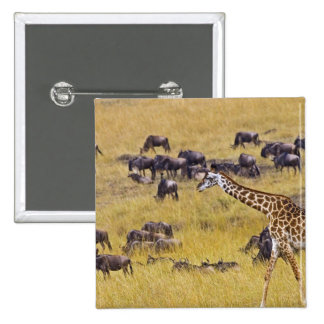 Crossing of the Mara River by Giraffes and 15 Cm Square Badge