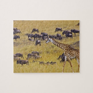 Crossing of the Mara River by Giraffes and Jigsaw Puzzle