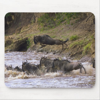 Crossing of the Mara River by Zebras and Mouse Pad