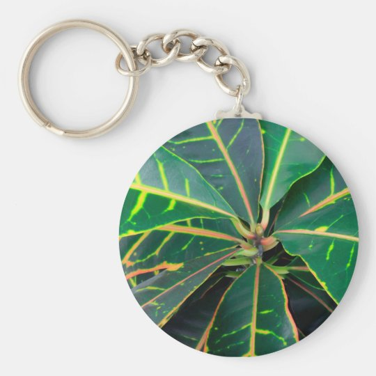 Croton Green Leaves Background Basic Round Button Key Ring