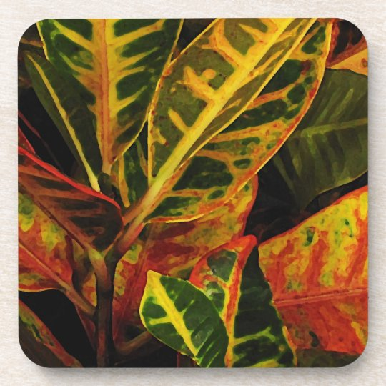 Croton Leaves Abstract Beverage Coaster