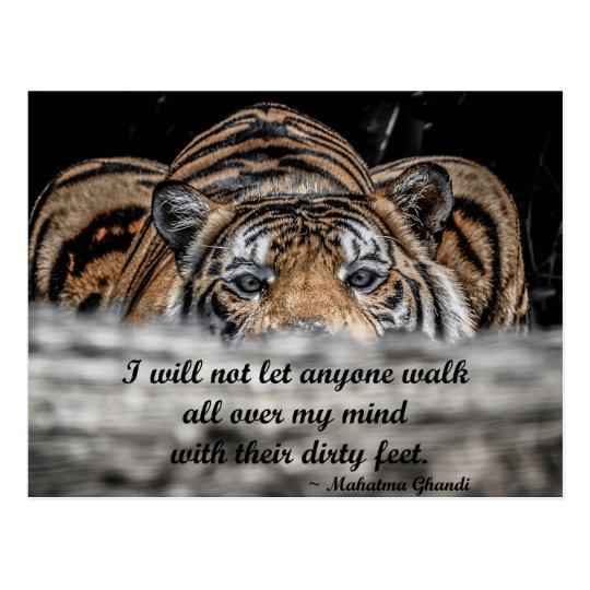 Crouching Tiger inspirational post card