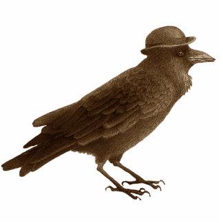 Crow Art Photo Sculpture