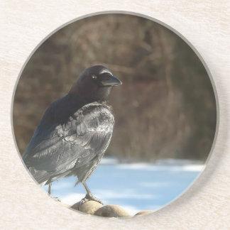 Crow Beverage Coaster