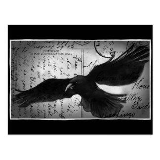 Crow deluxe postcard
