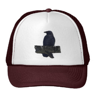 CROW GUARDIAN CAP