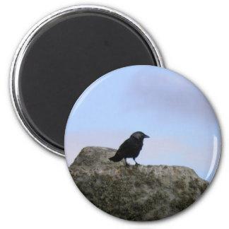 Crow guardian of Stone Henge Magnet