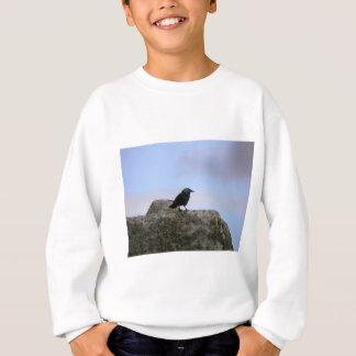 Crow guardian of Stone Henge Sweatshirt