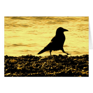 Crow on the Beach Card