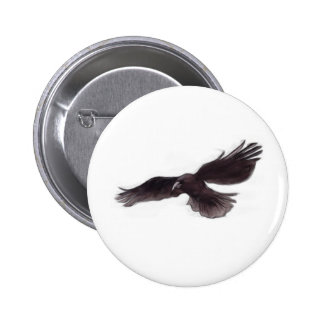Crow Pinback Buttons