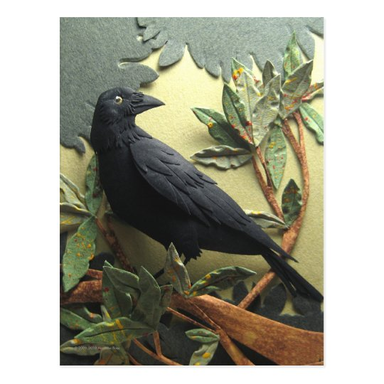 Crow Postcard