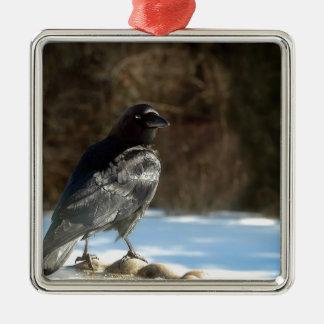 Crow Silver-Colored Square Decoration