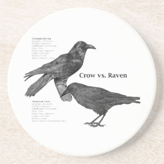 crow-vs-raven coaster