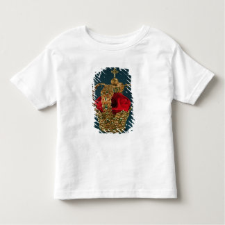 Crown of the Andes Toddler T-Shirt