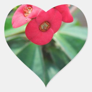 Crown of Thorns Heart Sticker