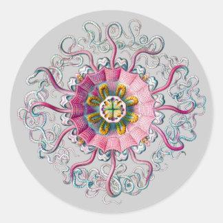 Crown or Helmet Jellyfish Round Sticker