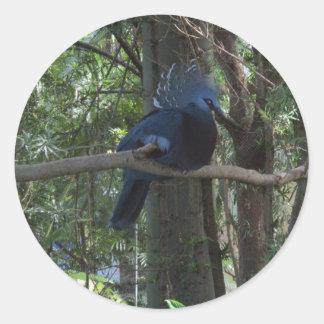 Crown Pigeon Round Sticker