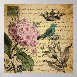 crown script hydrangea bird french botanical poster