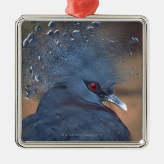 crowned pigeon Silver-Colored square decoration