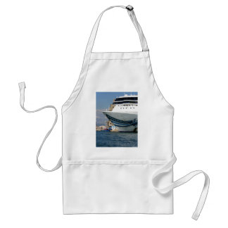 Cruise ship moored in a harbor standard apron