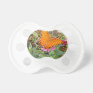 Cruiser butterfly from New Guinea Pacifier