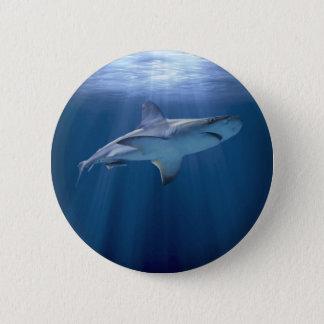 Cruising Shark 6 Cm Round Badge