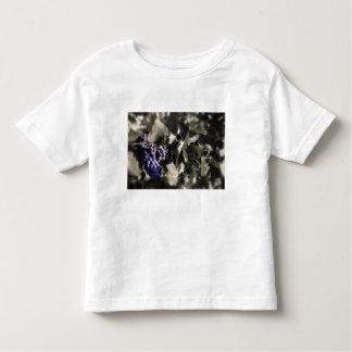 Crush at Tefft Cellars main vineyard Toddler T-Shirt