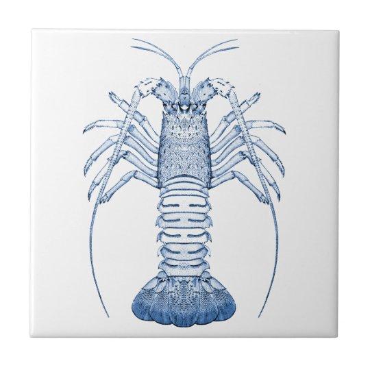 Crustaceans Ceramics ~ Rock Lobster Small Square Tile