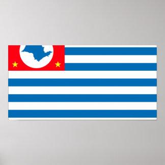 Cruzeiro Saopaulo Brasil, Brazil flag Posters
