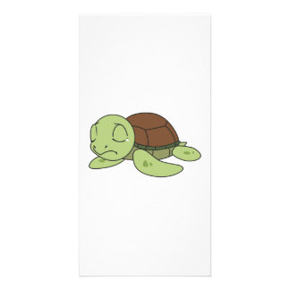 Crying Cute Baby Turtle Tortoise Greeting Card Photo Greeting Card