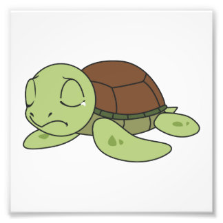 Crying Cute Baby Turtle Tortoise Invitation Stamps Photo Art