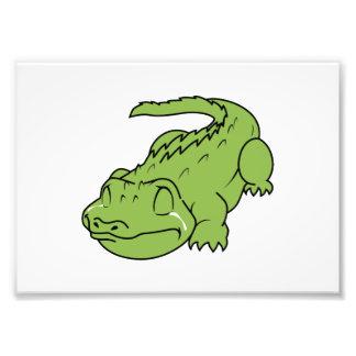 Crying Green Crocodile Tears Mug Button Pillow Pin Photographic Print