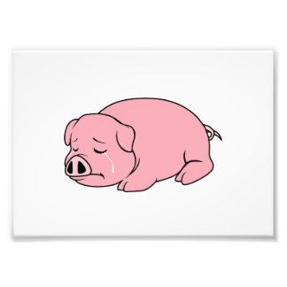 Crying Weeping Pink Pig Piglet Card Mug Pillow Pin Photo