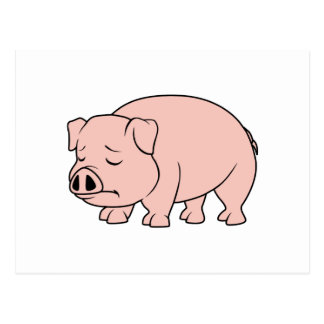 Crying Weeping Pink Piglet National Pig Day Postcard