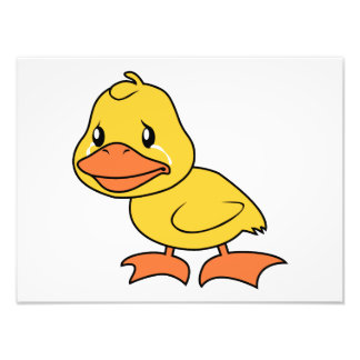 Crying Yellow Duckling Lame Duck Day Invitation Photograph