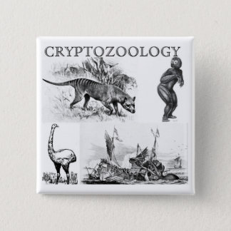 cryptozoology square button/pin 15 cm square badge