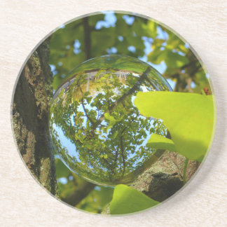 Crystal Ball in Gingko tree Beverage Coasters